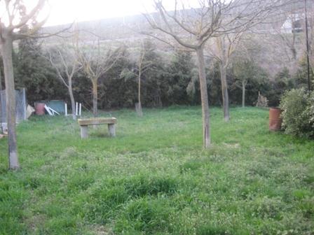 Casa de pueblo. rustica piedra. con jardin. huerto.