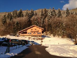 Promocion : chalet : 8/15 personas - les gets  alta saboya  rodano alpes  francia